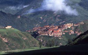 Dzongsar Shedra in Tibet