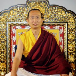 HE-Ratna-Vajra-Rinpoche-6by4-687x1030-683x1024